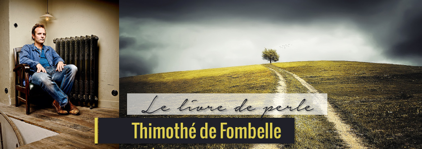 L'histoire de Joshua Perle écrite par Timothée de Fombelle
